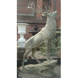 Bronze Stag with Antlers