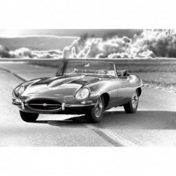 Jaguar E-Type Car 80cm x 120cm