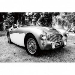 Austin Healey Car  80cm x...