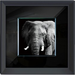 Elephant Framed Wall Art -...