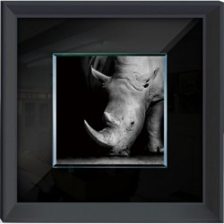 Rhino Framed Wall Art -...