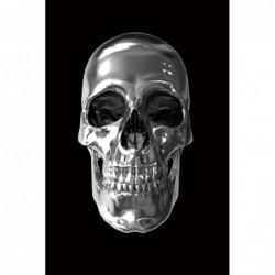 Skull - 80cm x 120cm