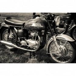 Norton Motorbike - 80cm x...