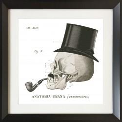 Set of 4 Skull Wall art - 60 cm x 60 cm