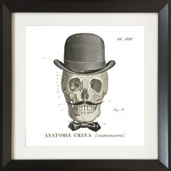 Set of 4 Skull Wall art - 60 cm x 60 cm